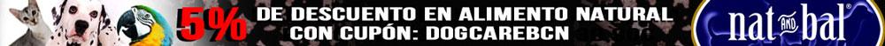 banner-NB-Dogcarebcn