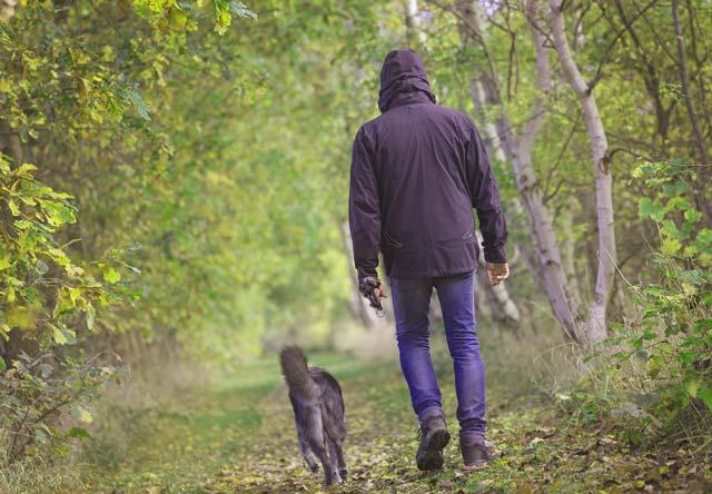 beneficios-pasear-a-un-perro